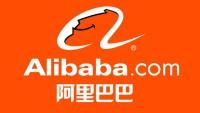 Tips Memilih Jasa Forwarder Alibaba Terpercaya